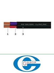 Dây điện Goldcup, dây tròn đặc 2 ruột CVVV 2x0.5
