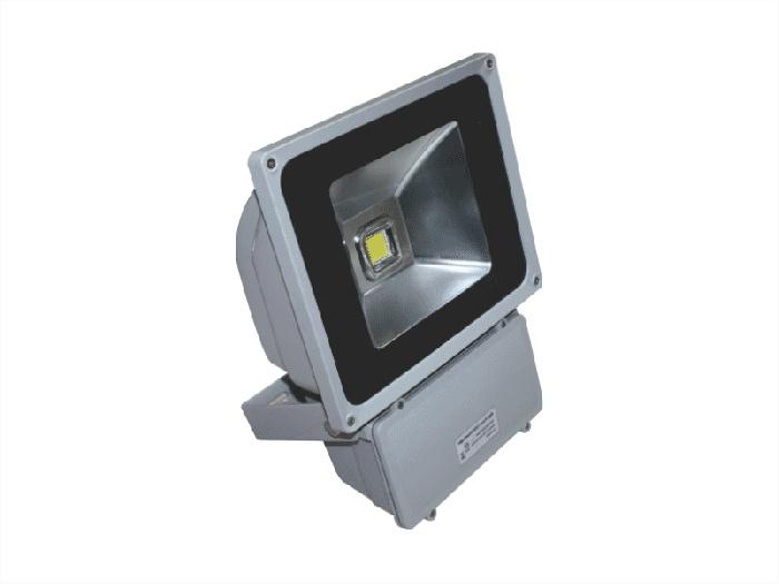 Đèn pha không thấm nước-led POLH8065 Paragon