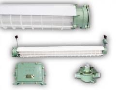 Máng đèn chống cháy nổ Paragon - BYP2 (2 bóng x 1,2m)