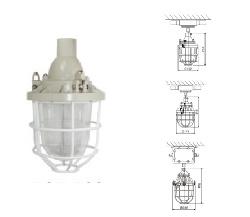 Đèn chống cháy nổ Paragon BCD100