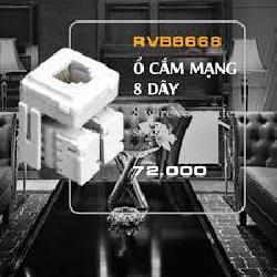 Hạt điện thoại 8 giây ROman RVB8668