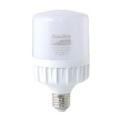Đèn LED Búp Trụ Rạng Đông LED TR80N1/20W.H